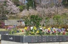 花 (募集期間2011年6月~2012年12月)