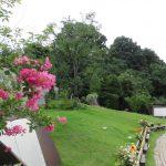 桜の里・あさ陽の丘