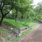 樹林墓地・水の精