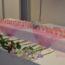 3月27日(土) スタッフによる「町田・桜葬メモリアル」を実施しました